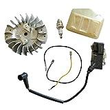 Générique volante motor bobina de encendido Bujía Kit para Husqvarna