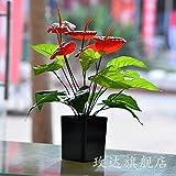 ShiQi Flores artificiales falso piso Salón Verde pot parte de