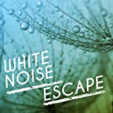 White Noise: Lateral Shift
