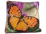 Cojín (con gran mariposa-consigue el verano en su casa-Precioso Photo