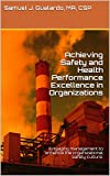 Achieving Safety and Health Performance Excellence in Organizations: Written to