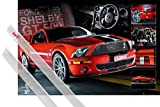 Póster + Soporte: Coches Póster (91x61 cm) Easton Red Mustang