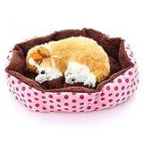 Algodón suave polar desmontable perro cachorro gato cama caliente casa