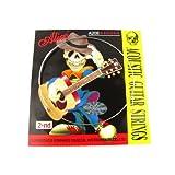 Musiclily Alice acero inoxidable Folk Guitarra acústica Segunda B Cuerdas,