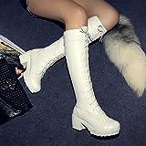 ZPL Delantera del cordón botas botas altas de tacón de