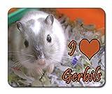 Gerbo alfombrilla de ratón, fauna, me encanta jerbos