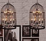XXTT-Lámpara Continental, minimalista, industrial, retro, salón, jaulas de pájaro, cristal,