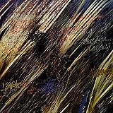 Nuvol I Cadira by Animals On Wheels (1999-11-08)