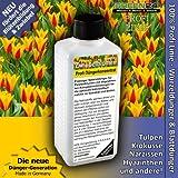Alta tecnología NPK fertilizante líquido Bulbos de Flores, suelo fertilizante