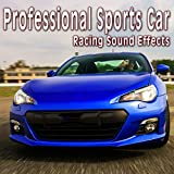 Professional Sports Car Pit Ambience with Ferrari F 333 Sp