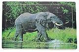25 Piezas Juguete Madera Educativo Rompecabezas Puzzle Animales Elefante para