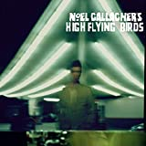 Noel Gallagher's High Flying Birds Cover