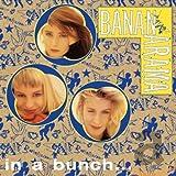 In A Bunch - CD Singles Box Set - 1981-1993