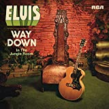 Way Down In The Jungle Room [VINYL]