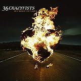 Rest Inside The Flames [180 gm LP vinyl]
