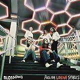 Foolish Loving Spaces