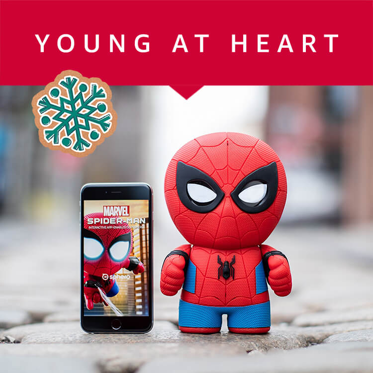 Gifts for Toys and Young at Heart