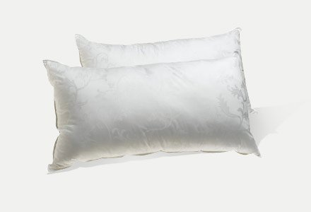 Bed Pillows & Positioners