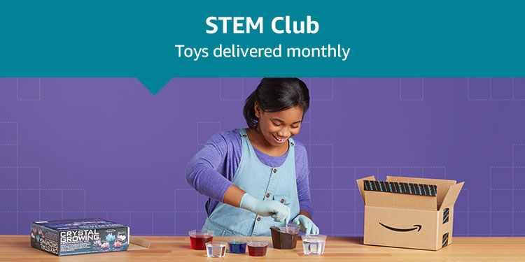 Stem Club: Toys delivered monthly