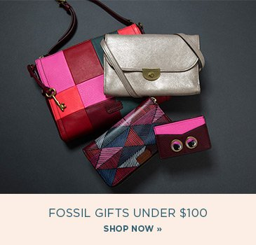 CP-1-Fossil-2016-10-31. Fossil Gifts under 100 dollars