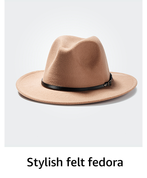 Stylish felt fedora