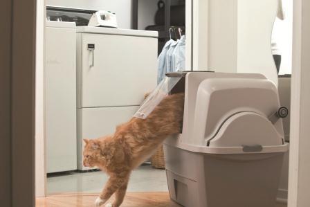Amazon Com Catit Design Smartsift Sifting Cat Pan