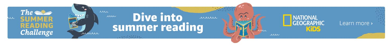 Dive into summer reading with the summer reading challenge
