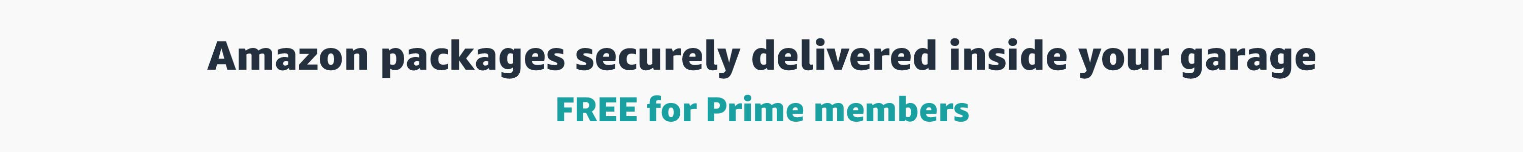 Amazon packages securely delivered inside your garage. FREE for Prime members.
