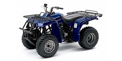 Yamaha YFM250 Bear Tracker Parts and Accessories: Automotive