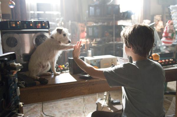 Amazon.com: Hotel for Dogs (Full Screen Edition): Emma ...