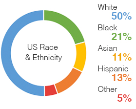 Chart: US Race and Ethnicity Overall | White 50%, Black 21%, Hispanic 12%, Asian 11%, Other 5%