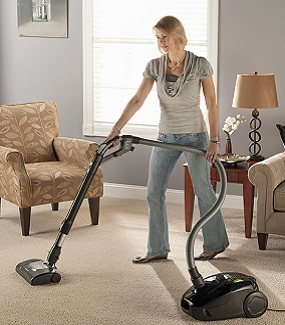 in use - Electrolux Canister Vacuum