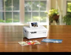 SELPHY CP800 Compact Photo Printer