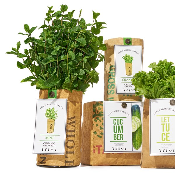 Organic Herb Grow Kits