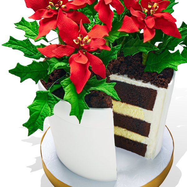 Oprah's Poinsettia Flower Pot Cake