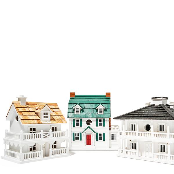 Novelty Bird Houses