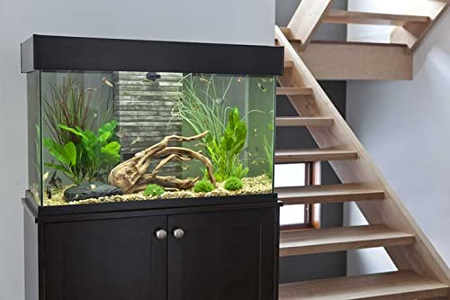 Fluval accent glass aquarium 25 gallon pet for Amazon fish tanks for sale