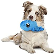 Pet Supplies : Pet Squeak Toys : Hear Doggy Small Blow