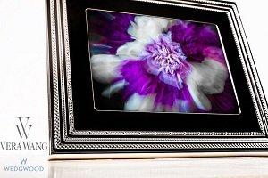 Amazon.com: Vera Wang Love Noir Digital Photo Frame, 8
