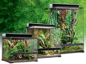 Amazon Com Exo Terra Glass Reptile Terrarium 12 By 12 By 12 Inch