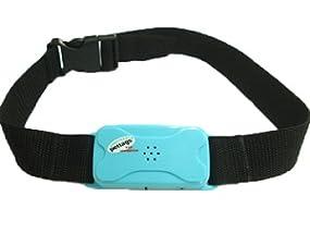 best-bark-collar
