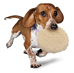 Pet Supplies : Pet Toy Balls : Petsafe Pogo Plush® Ball