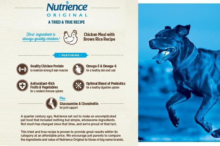 Nutrience Original Dog