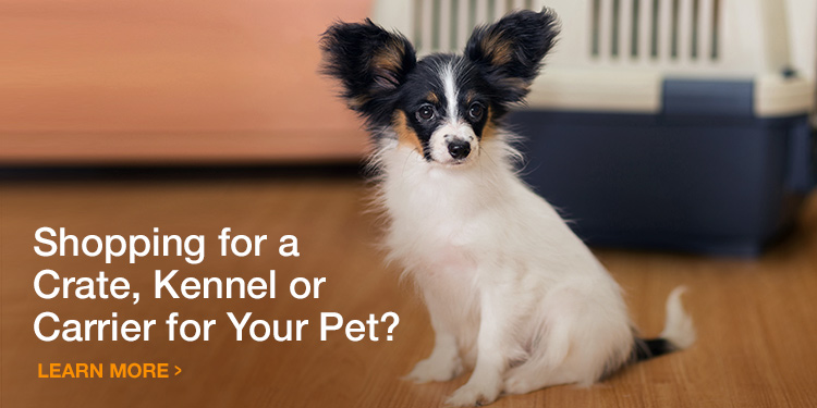 Choosing A Crate, Kennel or Carrier for Your Cat or Dog