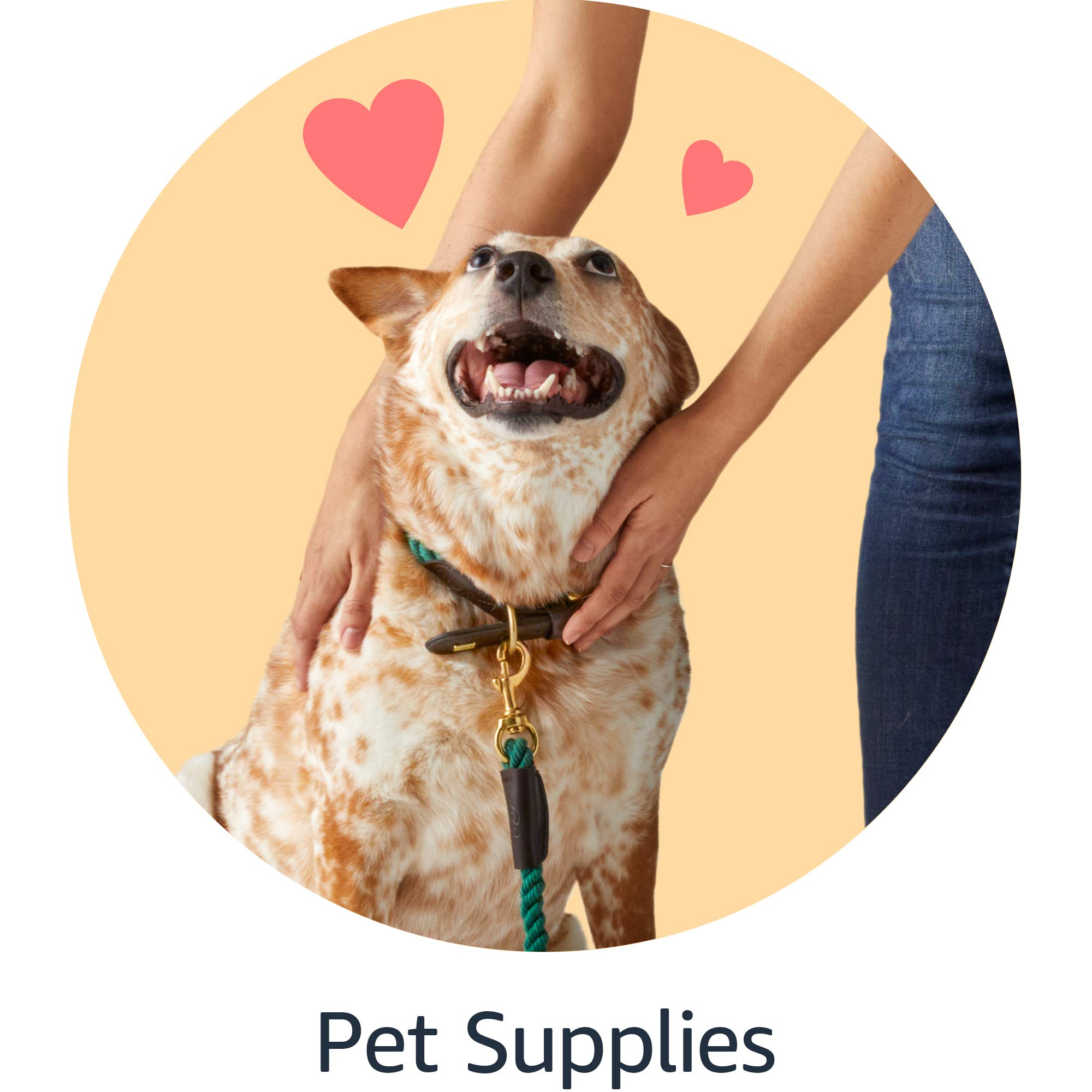 Shop pet supplies