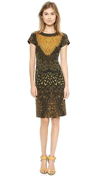 Alberta Ferretti Collection Feather Print Sheath Dress