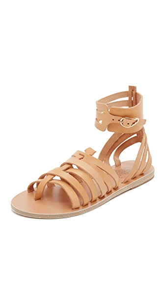 Ancient Greek Sandals Zaira Gladiator Sandals - Natural at Shopbop