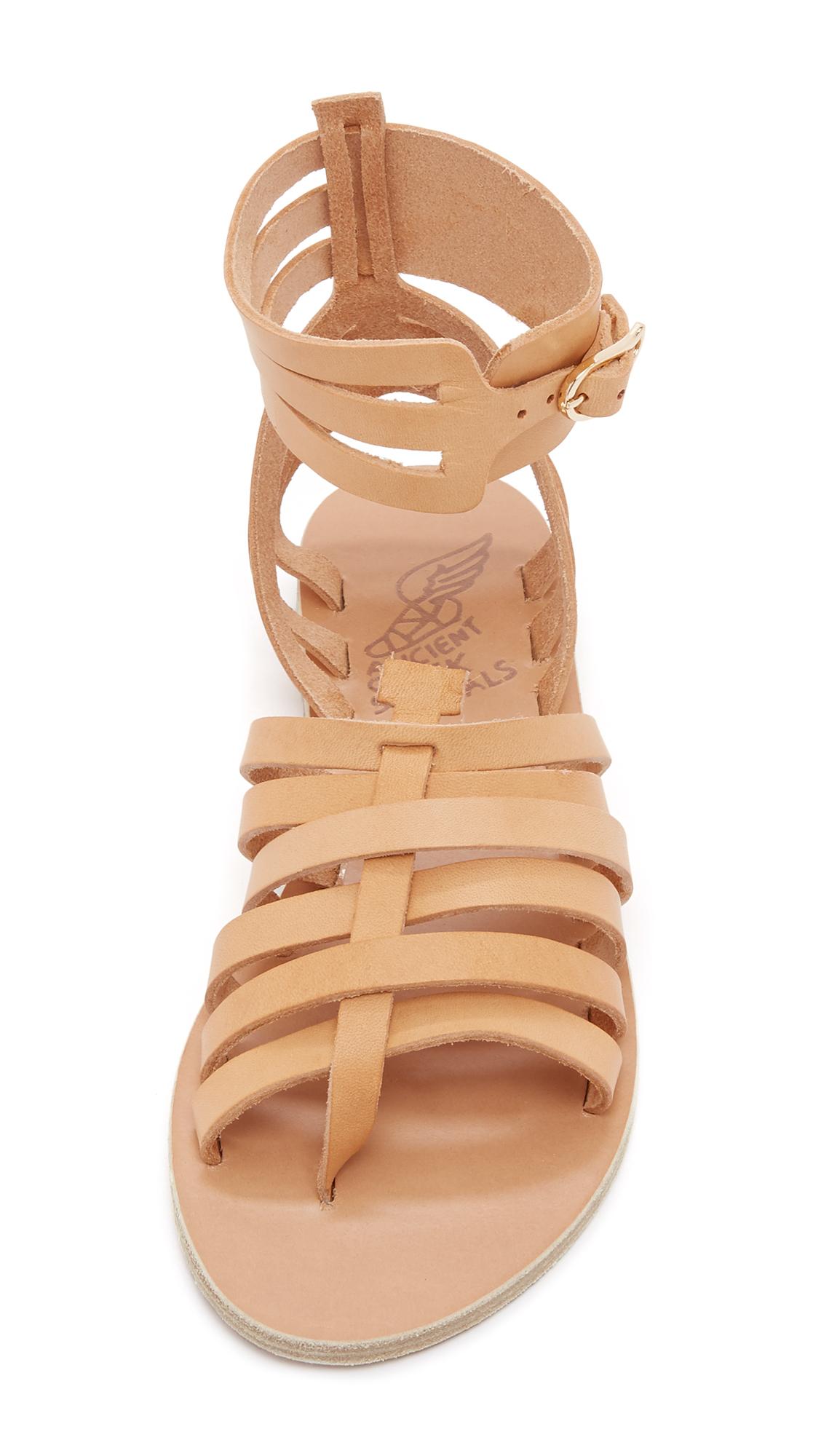 a48be112a0e Ancient Greek Sandals Zaira Gladiator Sandals