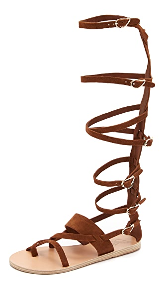 Ancient Greek Sandals Alethea High Gladiator Sandals