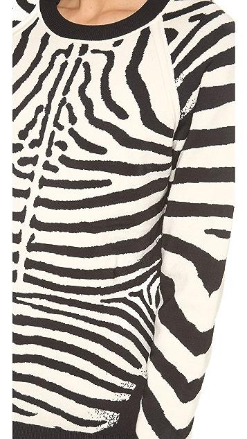 A.L.C. Zebra Sweater
